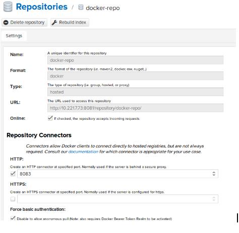 Nexus Raw Repository