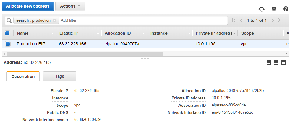 Elastic IP Address: AWS Console