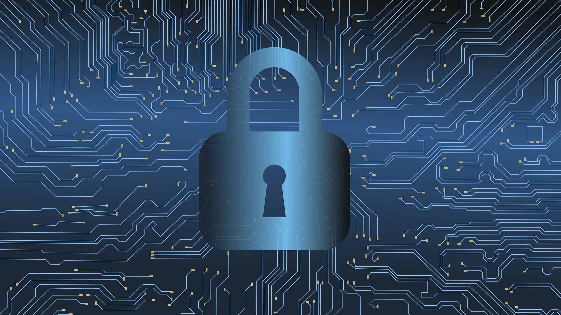 Understanding The Difference Between IT Security and