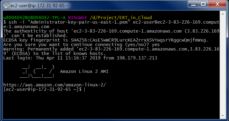 Figure-9: Connecting to AWS Linux instance