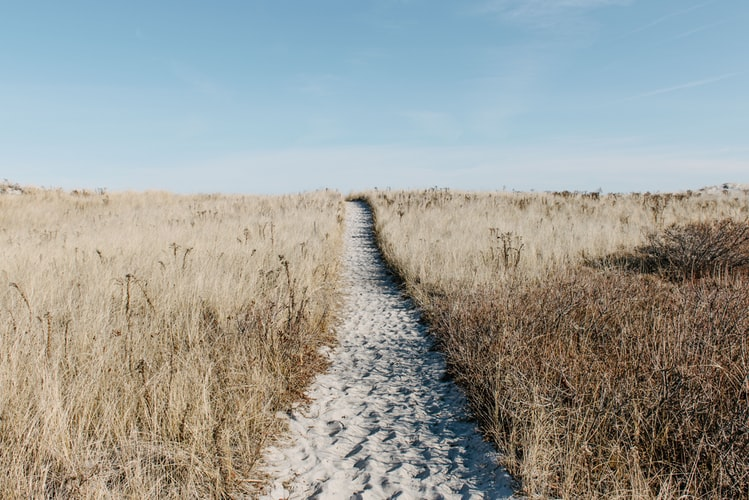 Is THIS the path to application modernization?