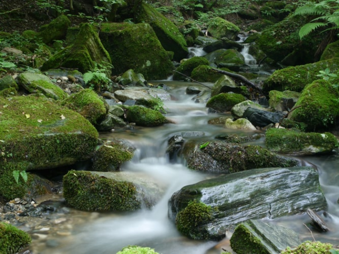 a stream flowing over rocks