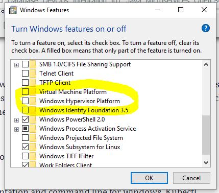 Windows Hypervisor Platform