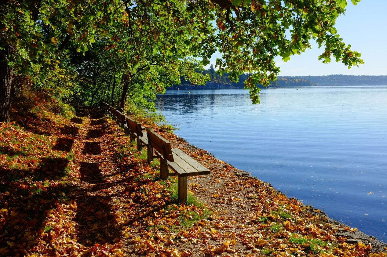 lake-view-benches.