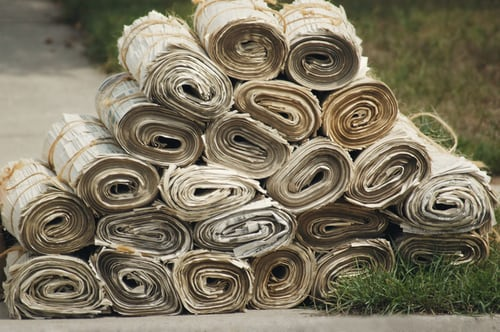 Rolls of newspapers stacked on ground