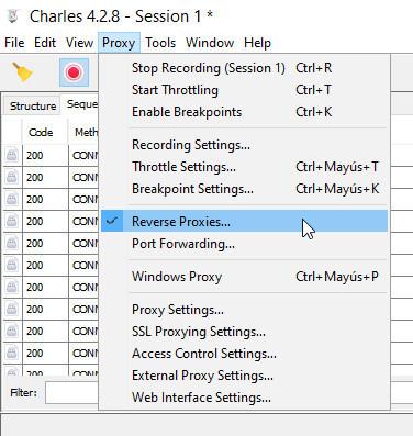 Reverse Proxies