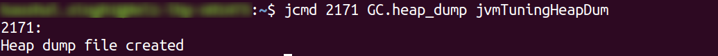 jcmd command - GC.heap_dump