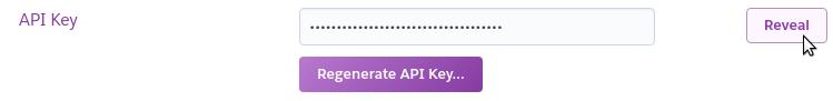 API key in Heroku