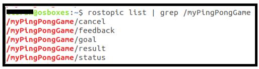 rostopic list