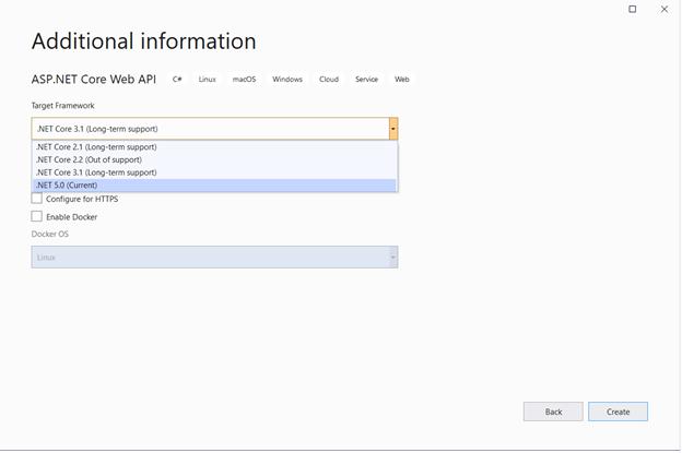 "Set .NET 5.0 as the framework version in ""Additional Information"""