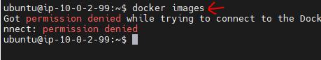 Docker Images Permission Denied