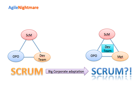 Figure 1: Applied Agile methodology and Scrum Framework adaptation in enterprise