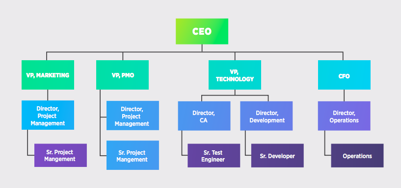 The Developer Within the Organization
