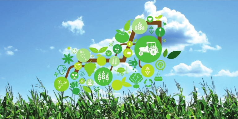 The Future of Smart Farming With IoT and Open Source Farming
