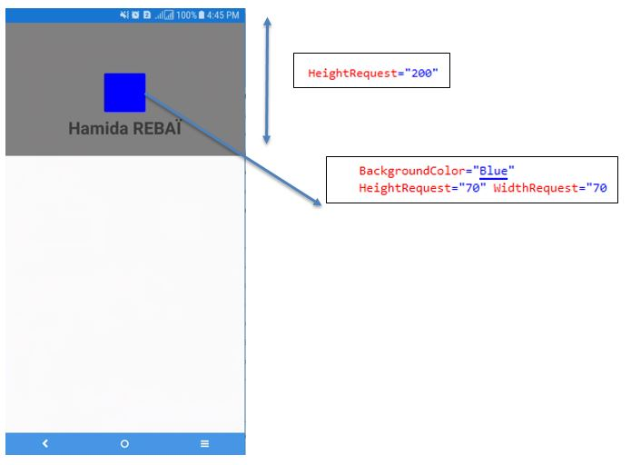 Xamarin Forms Background Color