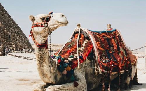 Creating Camel 3 CDI Microservices