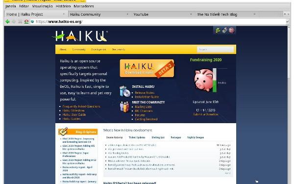Comprehensive Review of Haiku R1/beta2