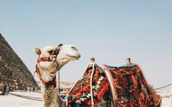 Getting Started With Apache Camel Part 1